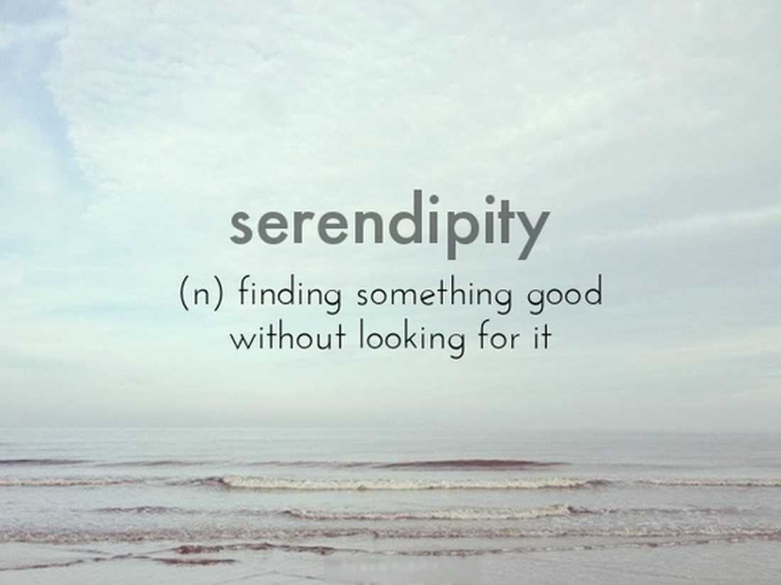 My Kind of Serendipity