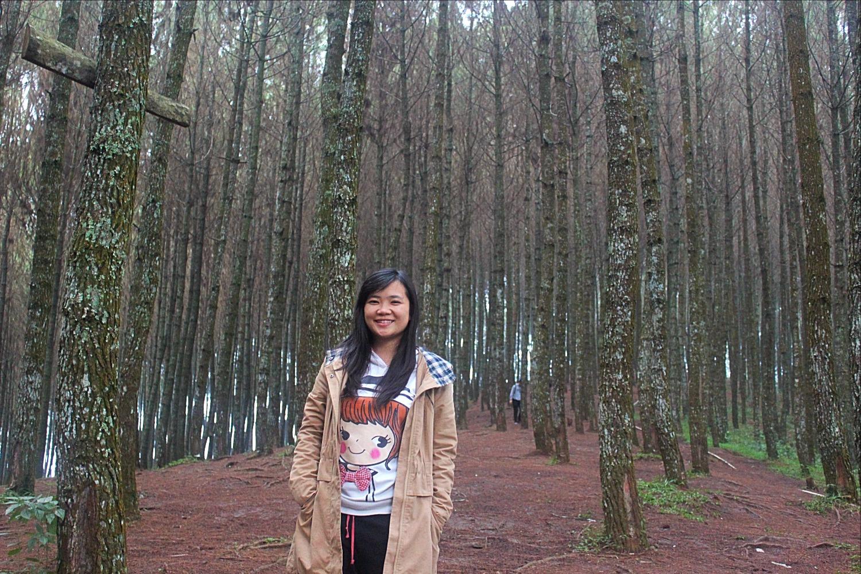 Hotel Pinus Bandung